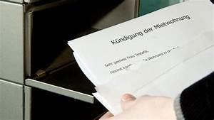 Kündigung Eigenbedarf Frist : miete versp tet gezahlt k ndigung erst nach abmahnung n ~ Lizthompson.info Haus und Dekorationen