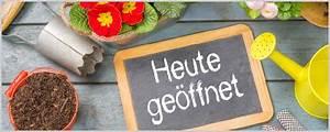 Verkaufsoffener Sonntag In Bremerhaven : blumen peters verkaufsoffener sonntag in bohmsiel ~ A.2002-acura-tl-radio.info Haus und Dekorationen