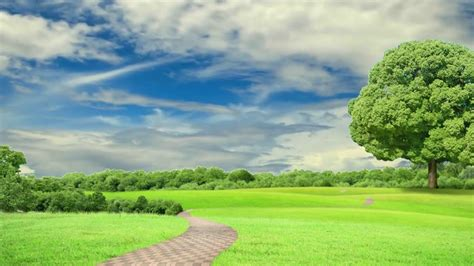 hd p nature background scenery video royalty