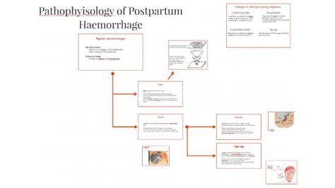 Pathophysiology of Postpartum haemorrhage by Paul McDowell