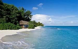 바탕 화면 다운로드 2560x1600 몰디브, 열대, 바다, 해변, 야자수, 오두막 HD 배경