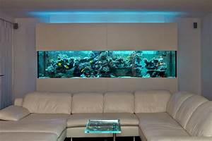 Fische Für Anfänger : aquarium meerwasser anf nger kleines aquarium f r anf nger mein kleines st ck meer reefer ~ Orissabook.com Haus und Dekorationen