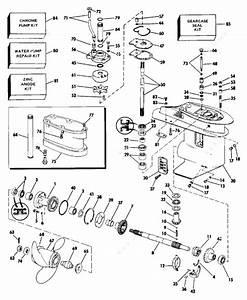 Evinrude 1988 30 - E30rlcce  Gearcase
