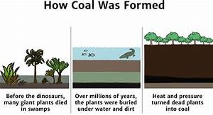 Coal - Knowledge Bank