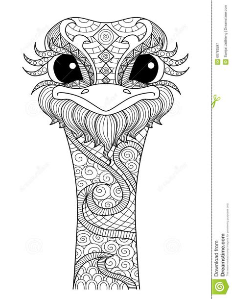 Hand Drawn Zentangle Ostrich Stock Vector - Image: 60783597