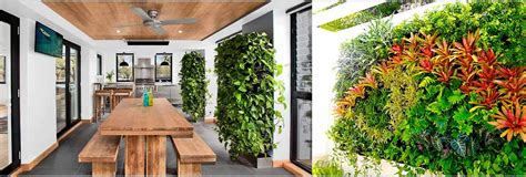Best Plants For Vertical Gardens by 10 Best Indoor Vertical Garden Plants For Delhi Ncr