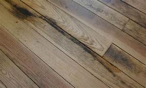 How to remove old urine stains from a carpet with for How to remove black urine stains from hardwood floors