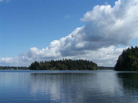american lake washington state fishing kokanee area fat forever