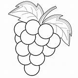 Grapes Coloring Drawing Fruit Drawings Bestcoloringpagesforkids Animal sketch template