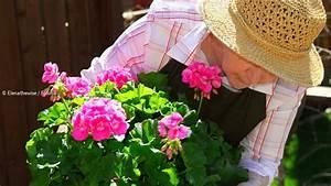 Wann Balkon Bepflanzen : gartenarbeit arbeiten im garten wie das bepflanzen unkraut j ten oder rasen m hen ~ Frokenaadalensverden.com Haus und Dekorationen