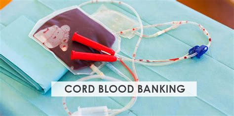 Cord Blood Banking Prep In Pregnancy  Stork Mama
