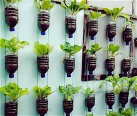 vertical garden bercocok tanam teknik