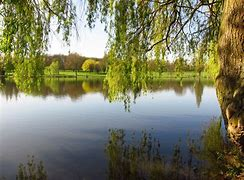 Image result for danson park