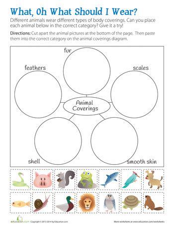 animal body coverings science worksheets grade