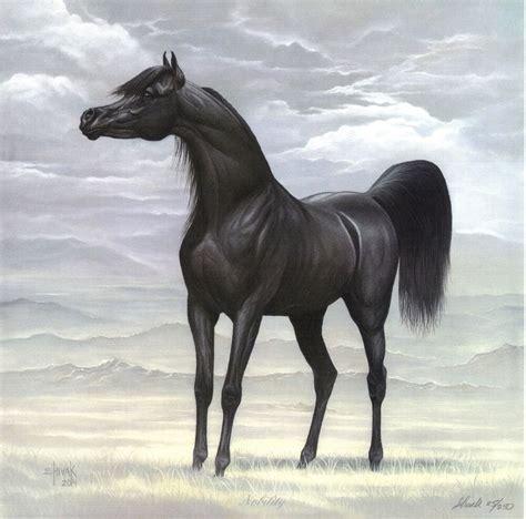 black stallion desert scene egyptian arabian horse art
