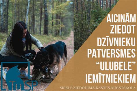 Studējošo pašpārvalde aicina ziedot dzīvnieku patversmei ...