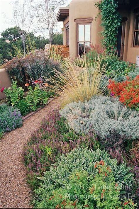 best xeriscape designs 25 best ideas about drought tolerant garden on pinterest drought tolerant landscape water