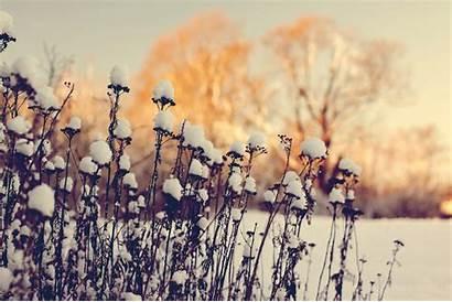 Computer Winter Snow Wallpapers Nature Desktop Sweet