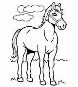 Coloring Horse Pages Draft Printable sketch template