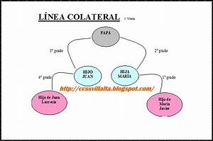 Ciencias Sociales  Parentesco  Arts  127  U2013 132 Del C U00f3digo De Familia El Salvador