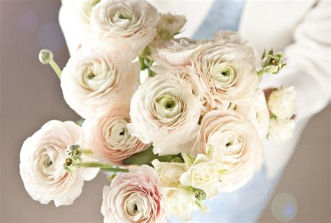 popular wedding flowers   shutterfly