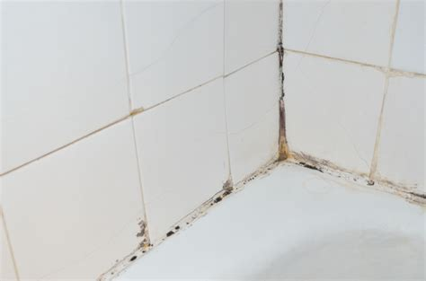 is your bathroom at risk for water damage mogil