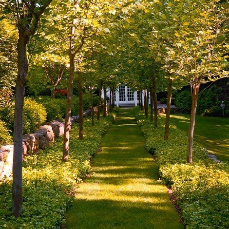 Magnificent Garden Formal Yet Inviting by What A Lovely Idea Mowed Path Leading To A Small