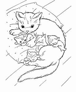 Kitten Coloring Pages To Print Coloring Home