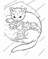 Cats Coloring Kittens Pages Printable Filminspector Cat Colouring Sheets Kitty sketch template
