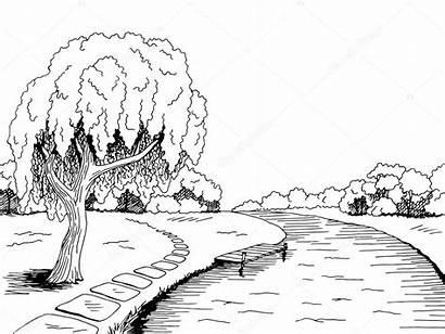 River Landscape Tree Sketch Vector Park Willow