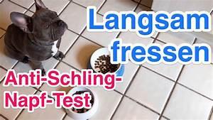 Anti Schling Napf Hund : hund frisst zu schnell anti schling napf vs normaler napf im vergleich youtube ~ Watch28wear.com Haus und Dekorationen