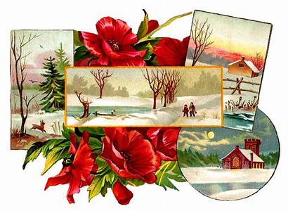 Christmas Printable Poinsettia Clipart Country Scenes Greeting