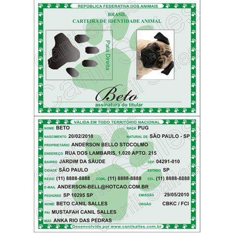RG PET Animais Animal Carteira Identidade Cães Gatos Aves