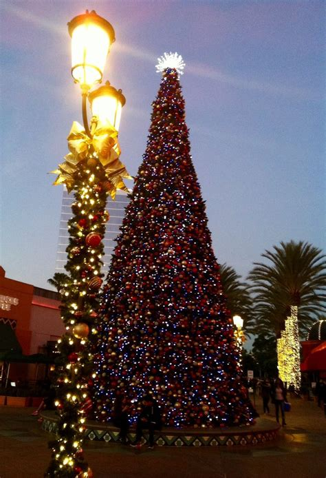 christmas trees irvine 203 best shopping images on time deco and diy