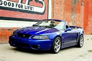 2003 Mustang Cobra Convertible Sonic Blue | Mustang cobra, 2003 ford mustang, Blue mustang