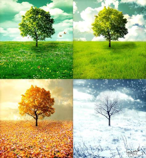 seasons fringearts