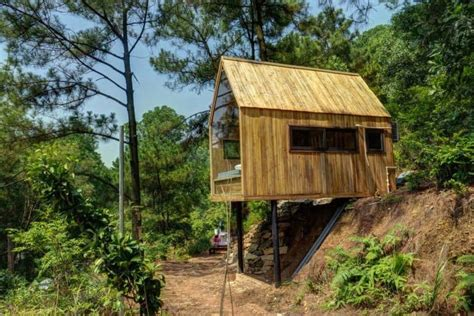 glass walled cabin built  stilts  beautiful forest views