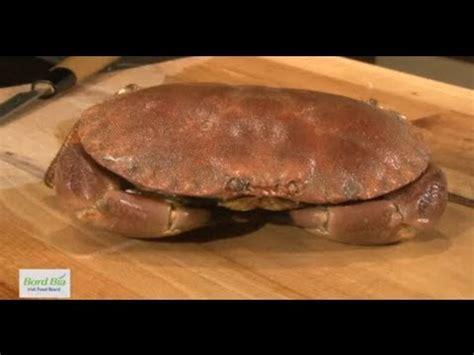 cuisiner un tourteau comment cuire un tourteau 750 grammes funnycat tv