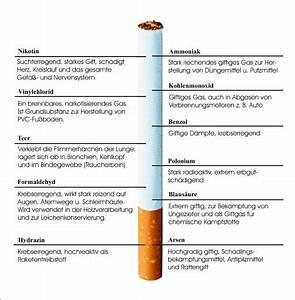 Nikotin Von Fensterscheiben Entfernen : nikotin on emaze ~ Markanthonyermac.com Haus und Dekorationen