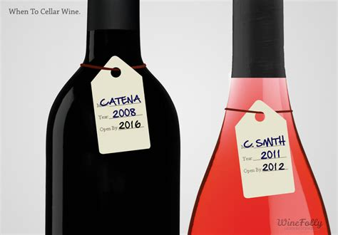 Should You Cellar Wine Or Drink It Now?  Wine Folly