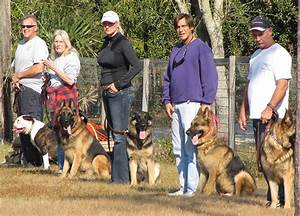 guard dog training With guard dog training