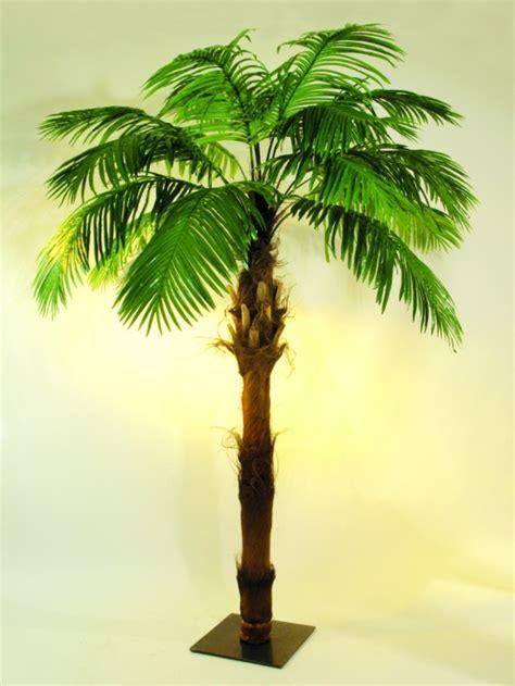 warum ist die deko palme  attraktiv archzinenet
