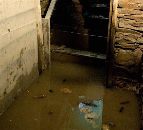 tile installer winnipeg mike bad weeping tile basement grief winnipeg