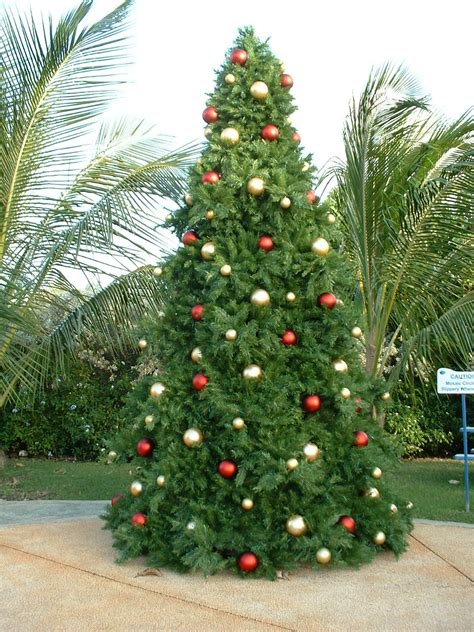 giant commercial grade christmas trees large artificial