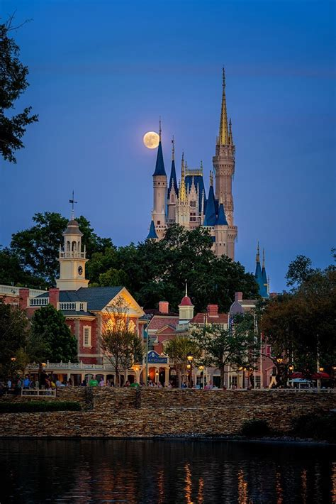 moonrise kingdom matthew cooper photography