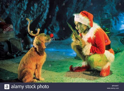 000818349x how the grinch stole christmas max dog grinch stole christmas stock photos max dog