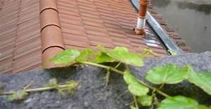 humidite maison comment lutter contre l39humidite With que faire en cas d humidite dans une maison
