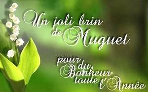 Quand Planter Le Muguet : muguet porte bonheur 13 clochettes photo de fleur une ~ Melissatoandfro.com Idées de Décoration