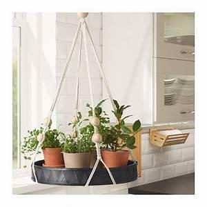Vasi sospesi per piante da appendere