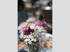 CloseUp Photography Flowers in a Vase · Free Stock Photo